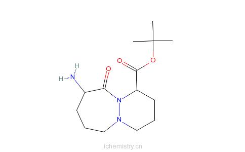 CAS:106860-20-2_1-(S)-顺式-9-氨基八氢-10-氧代-6H-哒嗪并[1,2-A][1,2]二氮杂卓-1-羧酸叔丁酯的分子结构