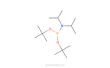 CAS:137348-86-8_N,N-二异丙基亚磷酰胺二叔丁酯的分子结构