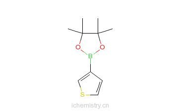 CAS:214360-70-0_噻吩-3-硼酸频哪醇酯的分子结构