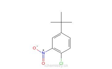 CAS:58574-05-3_4-氯-3-硝基叔丁基苯的分子结构