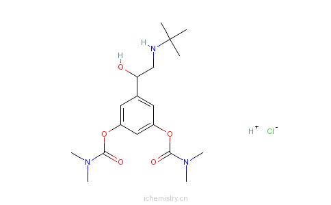 CAS:81732-46-9_盐酸班部特罗的分子结构